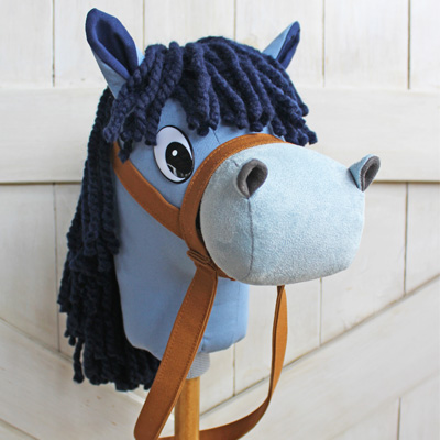 blue pony on a stick